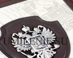 История России_история_книги_кожа_серебро_подарки_сувениры